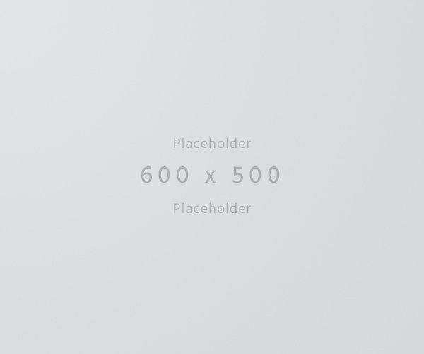 600×500-light